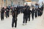 Mỹ, Hà Lan bắt giữ nghi can khủng bố