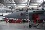 Ấn Độ, Pháp thúc đẩy thương vụ máy bay Rafael