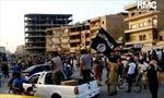Australia cấm công dân tới thủ phủ Raqqa của IS