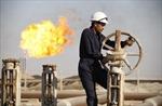 Giá dầu tiếp tục lùi về mức thấp nhất 5 năm