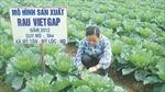 Người tiêu dùng ngại sản phẩm nông nghiệp an toàn