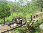 Gần 700 triệu USD hỗ trợ vùng dân tộc, miền núi