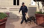 Đại sứ quán Canada tại Ai Cập đóng cửa vì lý do an ninh