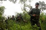 Tình quân dân nơi biên giới