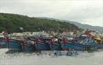 Đã tìm ra tung tích tàu cá BĐ 96972 -TS
