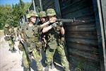 Thụy Điển và ba nước Baltic tăng cường sức mạnh quân sự