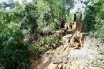 Sạt lở núi, một thôn ở Bình Định bị cô lập