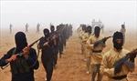 IS đánh bom liều chết vào căn cứ không quân của Syria
