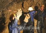 Danh sách 12 công nhân mắc kẹt trong hầm thủy điện