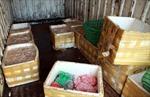 Hưng Yên: Bắt giữ gần 5 tấn lòng lợn thối