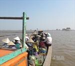 Bãi ngao nơi lật thuyền 6 người chết đã trở lại sản xuất