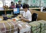 NHNN tăng cường công tác cơ cấu lại, xử lý nợ xấu
