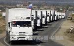 Nga lập ủy ban hỗ trợ nhân đạo cho Đông Ukraine