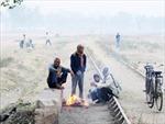 Delhi trải qua đợt giá lạnh nhất trong vòng 11 năm