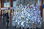 Những điều ước dưới cây thông Noel ở Rome
