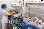 TP.HCM có tổng tỷ suất sinh thấp nhất cả nước