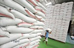 """Thái Lan tiếp tục """"xả bán"""" 247.000 tấn gạo"""