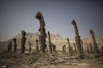 Cái chết của biển Chết