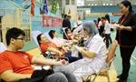 Thiếu trầm trọng nhóm máu A, O cho điều trị