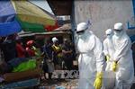WHO: 8.235 người đã tử vong vì Ebola