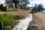 Doanh nghiệp giới hạn thu mua sữa, hộ nuôi bò bức xúc