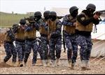 Quân đội Iraq tiêu diệt 32 phần tử IS