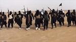 Có tới 700 người Thổ Nhĩ Kỳ trong hàng ngũ IS