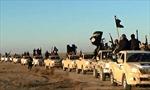 IS có dã tâm chinh phục châu Âu