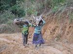 Tìm nguyên nhân xuất khẩu lao động ở các huyện nghèo đạt thấp