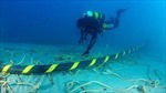 Hoàn tất hàn nối cáp quang biển, khôi phục Internet