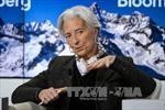 IMF tiếp tục hỗ trợ tài chính cho Hy Lạp sau bầu cử