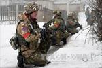 Dân quân Đông Ukraine chiếm Uglegorsk, đột nhập Debaltsevo