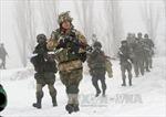 Ukraine cân nhắc lập lữ đoàn chung với Ba Lan, Litva