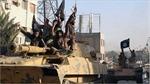 Mỹ: Hòa giải ở Iraq sẽ hỗ trợ cuộc chiến chống IS