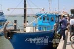 Ngư dân Bình Thuận tiếp cận tàu cá vỏ composite