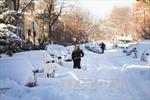 Thêm bão tuyết lớn đổ bộ vào Đông Bắc Mỹ