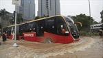 Indonesia: Thủ đô Jakarta ngập sâu trong nước