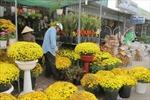 Tấp nập hoa về TP Hồ Chí Minh