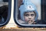 Điều gì đang chờ đợi sau lệnh ngừng bắn ở Ukraine?