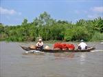 Ba lĩnh vực đột phá ở đồng bằng Sông Cửu Long