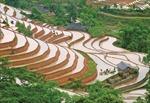 Nâng cao giá trị nông nghiệp gắn với xây dựng nông thôn mới