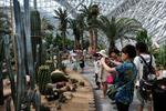 Trung Âu đẩy mạnh thu hút du khách từ châu Á