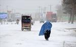 Tuyết lở vùi chết 124 người Afghanistan