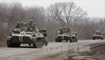 Thỏa thuận ngừng bắn tại miền Đông Ukraine lại bị vi phạm
