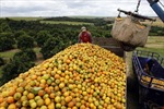 Mỹ Latinh trước thách thức lớn: chặn lạm phát, thúc tăng trưởng