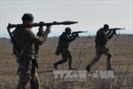 Ukraine yêu cầu triển khai phái bộ hòa bình tới miền Đông