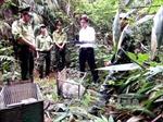 Quảng Bình: Thả 8 con vật quý hiếm về rừng