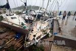 Không có thông tin người Việt thương vong do bão ở Vanuatu