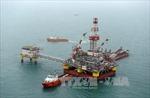 Giá dầu châu Á xuống thấp nhất 6 năm