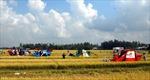 """Cơ giới hóa nông nghiệp ở ĐBSCL: Gỡ """"nút thắt"""" cho cơ khí nông nghiệp"""